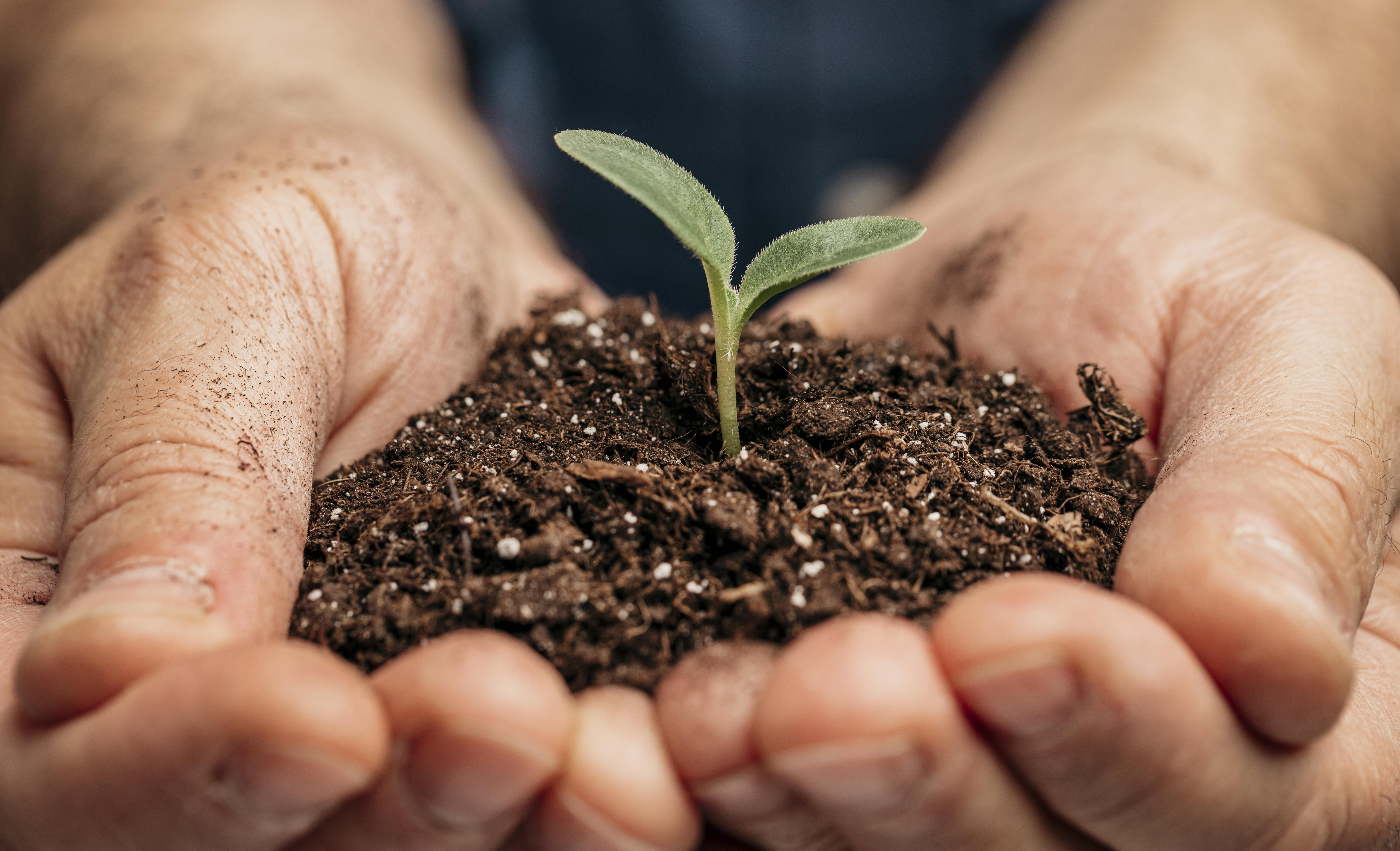 Општина Гостивар, бројни активности за Денот на екологијата